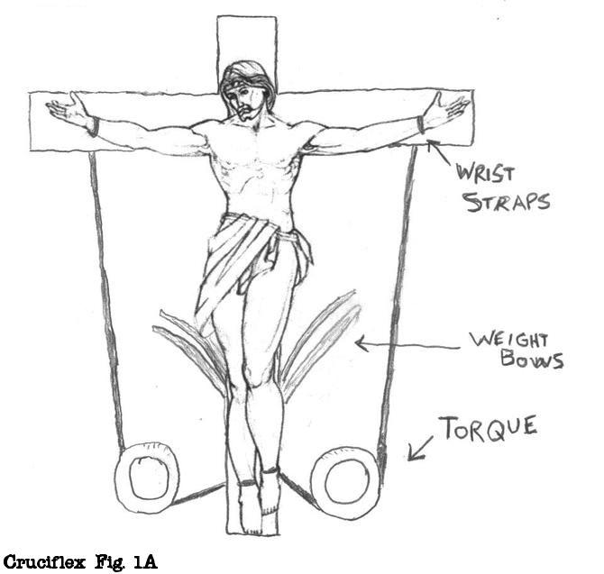 Cruciflex Fig 1A