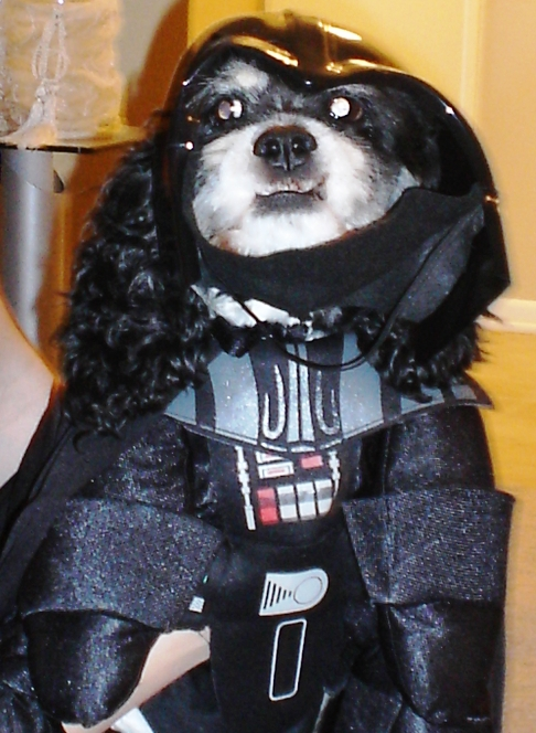 Darth Roxy